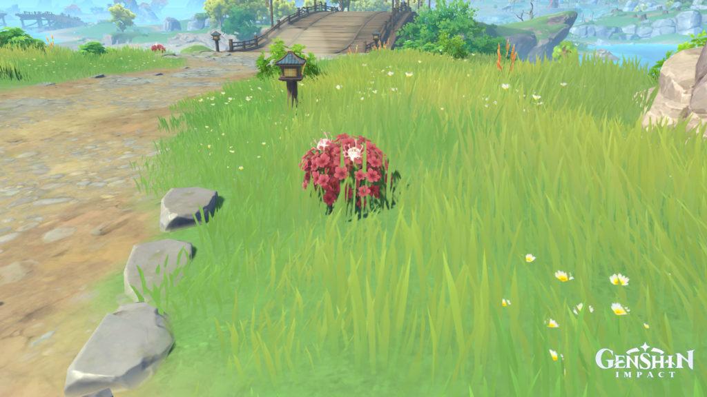 Où cultiver des fleurs en soie à Genshin Impact